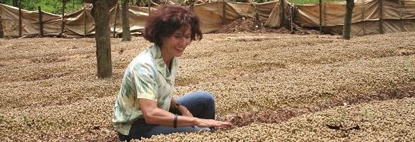 Frau beugt sich ueber Kaffeesetzlinge auf Plantage Santa Elena