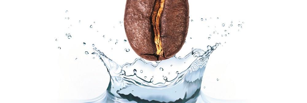 Kaffeebohne faellt in spritziges Wasser